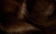 Hair Color Chart: Dark Golden Brown