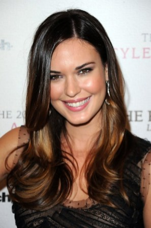 Ombre Hair Style 2013 Layered Long Sleek Hairstyle for Women