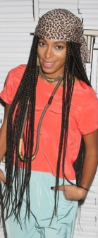 Small Braids for Natural Curly Hairstyles for Black Women