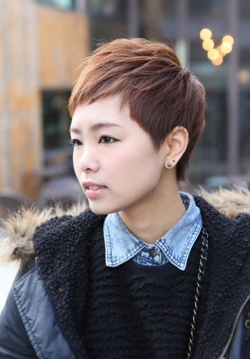 Short Layered Boyish Hairstyle - 2013 Brown Pixie Cut for Women