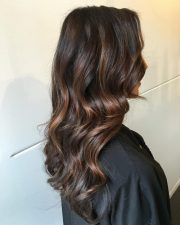 delicious chocolate brown hair