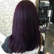 stylish dark purple hair color