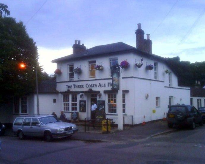 The Three Colts Buckhurst Hill Essex Pub Review - The Three Colts, Buckhurst Hill, Essex - Pub Review