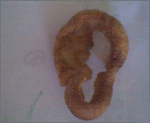 ear shaped scratching from ebay - Found Pork Scratching Pictures
