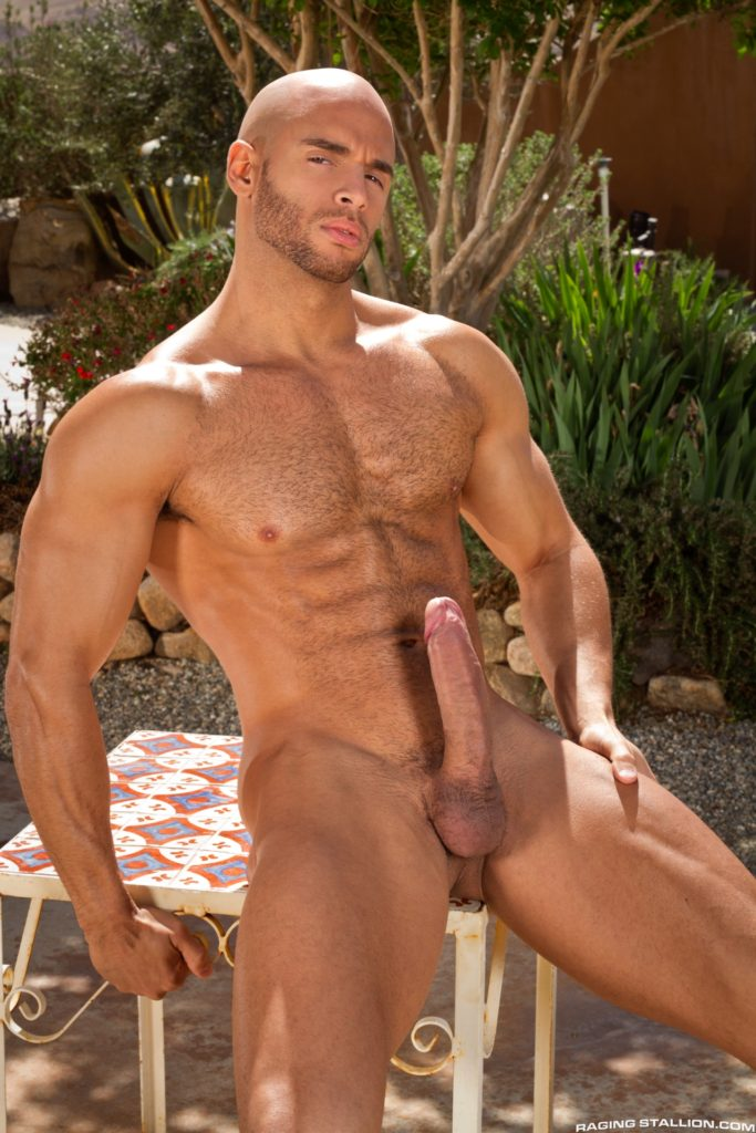 Naked Hairy Male Models