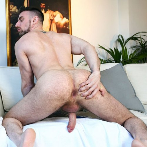 Hairy Asses S