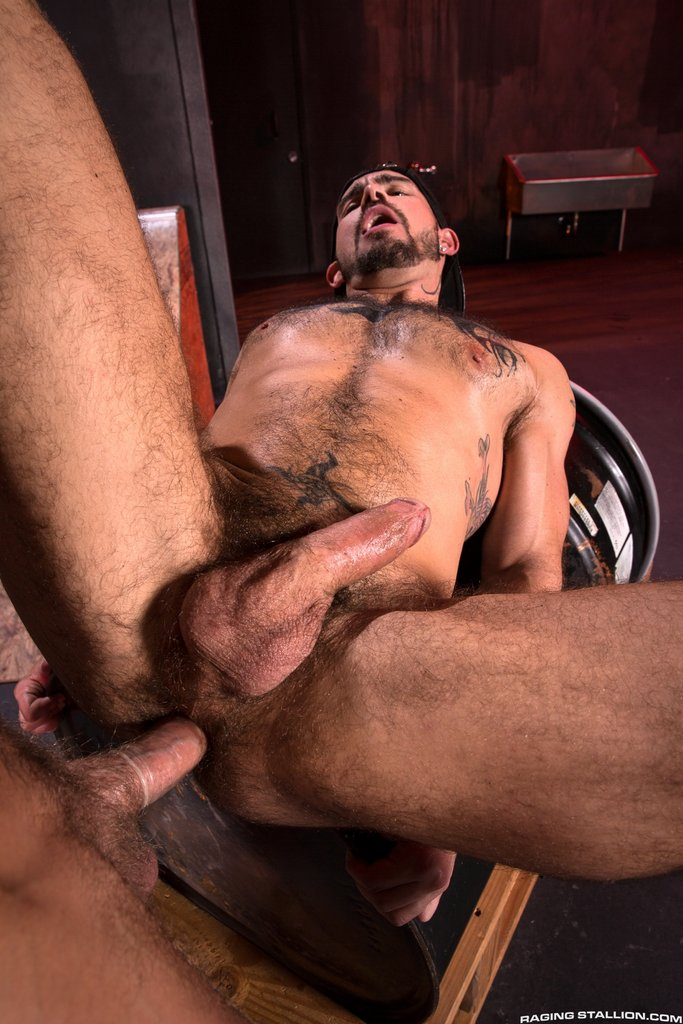 Bearded Stud Hoytt Walker Drills Aarin Asker 01
