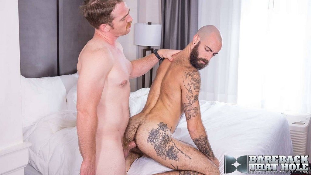 Nate Stetson Breeds Stephen Harte Deep 07