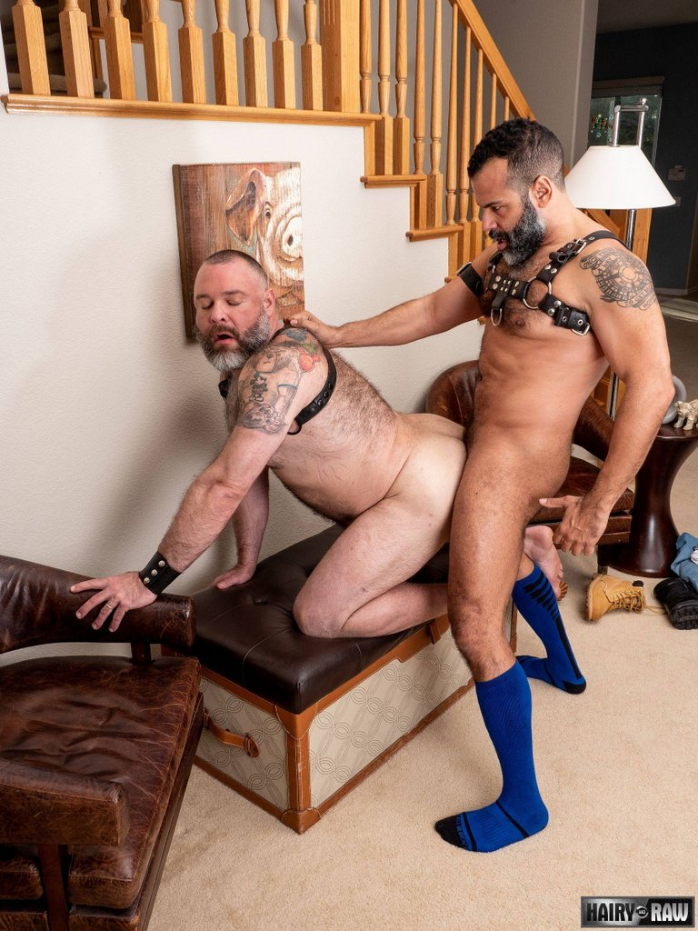 Sterling Johnson Breeds Kurt Jacobs Hard 01