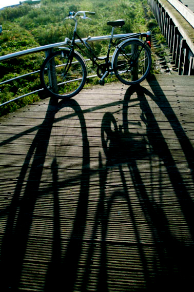 bike-shadow