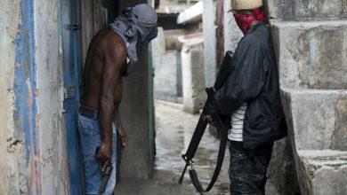 gang members credit WPLG