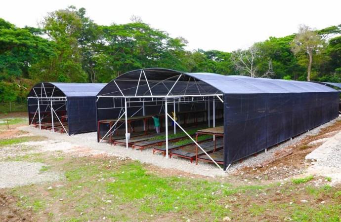 Haïti-Environnement: Inauguration d'un Nouveau Centre de germoplasme, un pas vers la reforestation