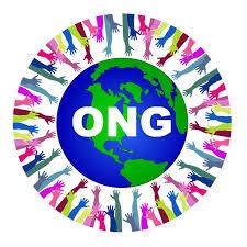 Une ONG suisse presente son bilan sur la réduction de la délinquance en Haïti, l'OPC critique