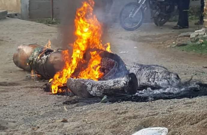 Le très fameux bois «KITA NAGO» est brûlé !