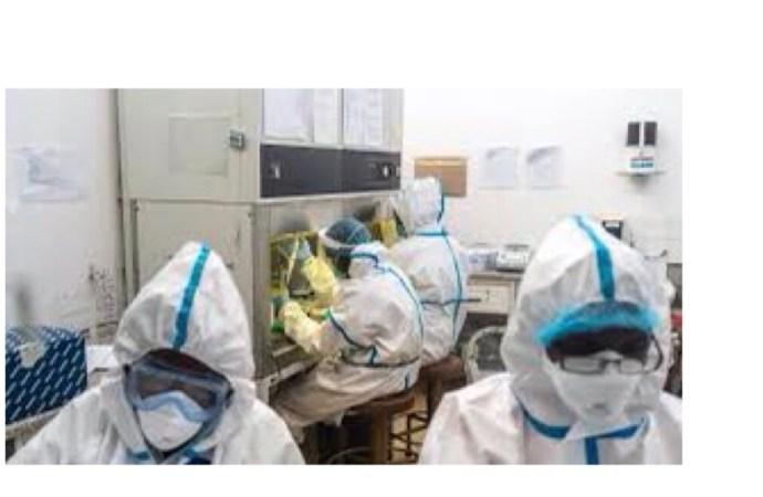 37 nouveaux cas de coronavirus enregistrés en Haïti