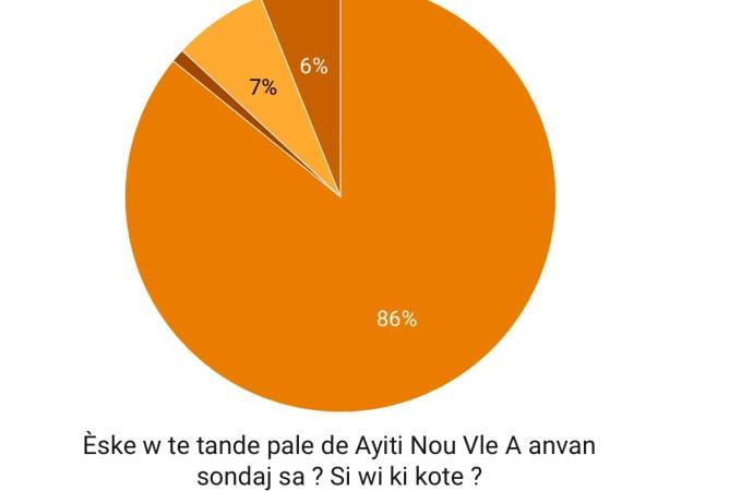 Ayiti Nou Vle-Sondage : 86% de citoyens favorables à une nouvelle constitution, 60% prêts à voter