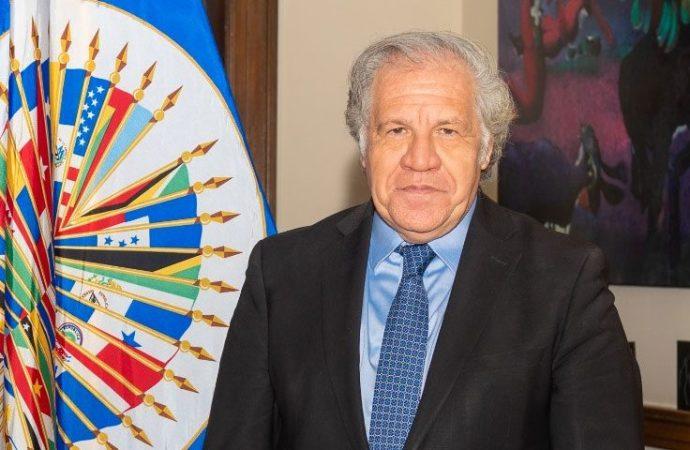 L'OEA renouvelle son support à Haïti après l'assassinat du président Moïse