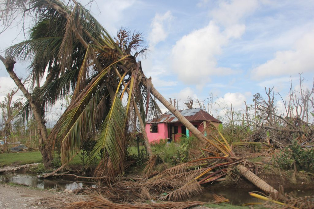 Illness, bad weather and bad crops threaten Haiti