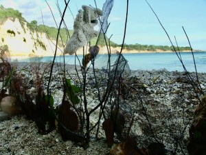 Lamontay Haiti beach