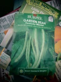 burpee garden bean