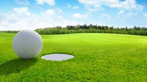 Etats-unis : Une fillette décédée après avoir été frappée par une balle de golf 1
