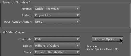 Format Options
