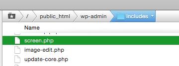 wordpress white admin screen