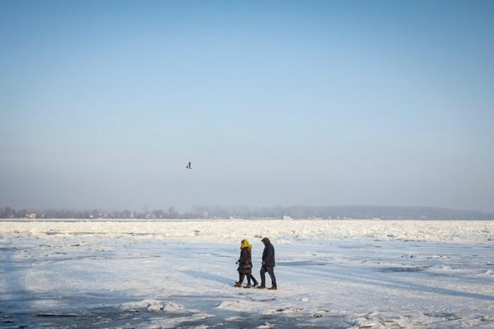 Danube gelé