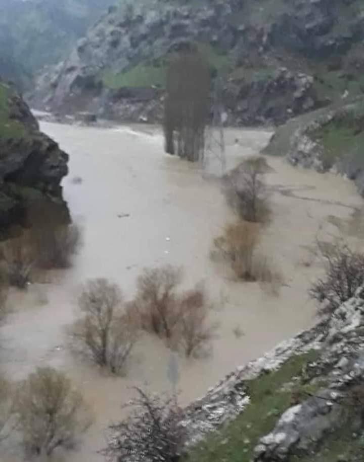 Taşan dere suları Derecik karayolunu kapattı