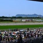 【2016/6/18~7/24】「函館競馬場開設120周年函館競馬」関連イベント