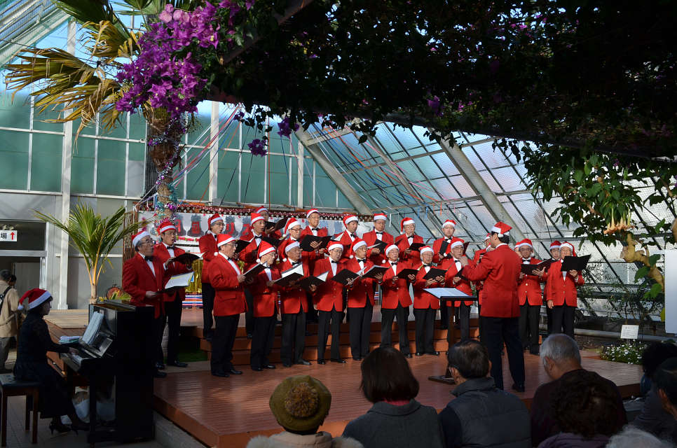 函館市熱帯植物園 クリスマスコンサート