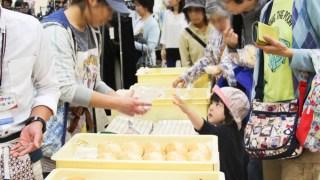 【2017/5/27・28】渡島授産事業所連絡会 初夏のパン&スイーツまつり