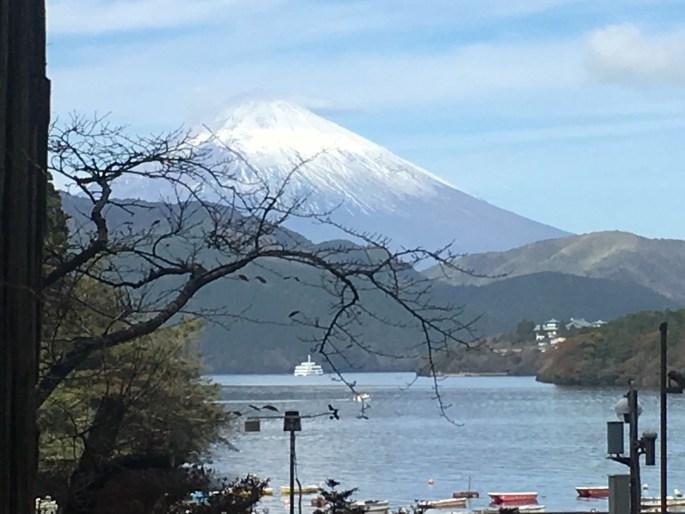 Fuji and Lake Ashinoko from Cedar Avenue