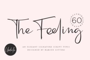 Feeling // an Elegant Script