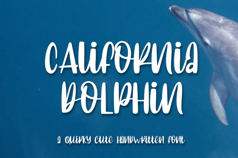Preview image of California Dolphin