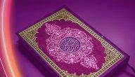 كم مرة ذكرت الجنة في القرآن