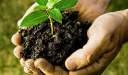 الزراعة العضوية ما هو مفهوم الزراعة العضوية و مميزاته