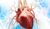 انصباب التامور ..مشكلة صحية قد تصيب قلبك ، الأعراض وطريقة علاجها