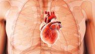 تضخم القلب ، مامعنى هذا التضخم وما هي أسبابه وعلاجه؟ .. تعرّف على هذا المرض