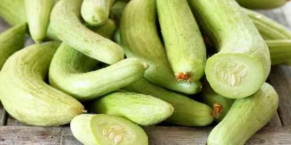 نبات القثاء و أبرز 9 فوائد له