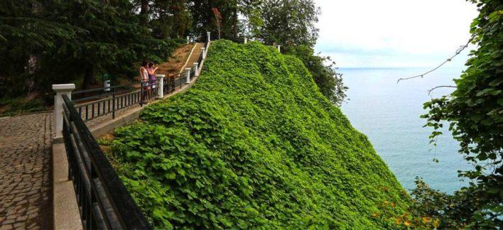 أفضل الأماكن في باتومي جورجيا - الحديقة النباتية botanical Garden