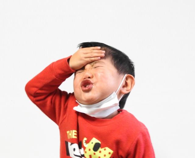 R1 インフルエンザ