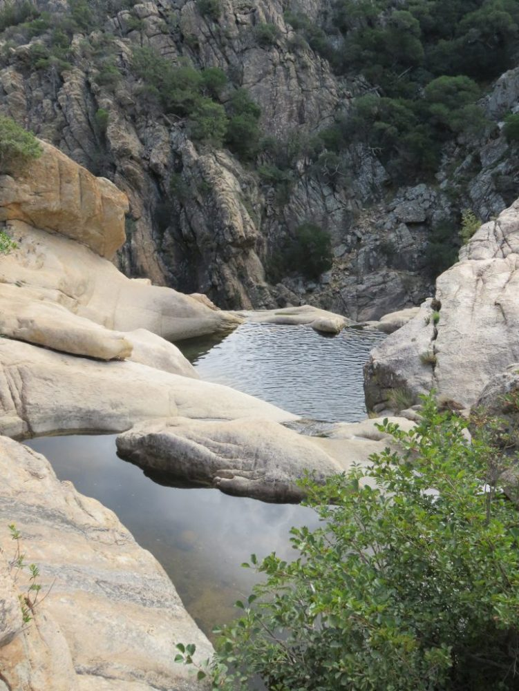 pitrisconi-nearby-rock-pools1