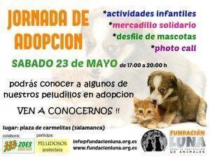 Jornada de adopción de Fundación Luna en carmelitas