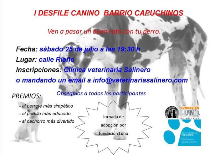 I Desfile Canino en el Barrio de Capuchinos