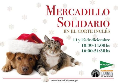 Mercadillo Solidario de la Fundación Luna en El Corte Inglés