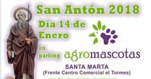Celebra San Antón, el patrón de las mascotas