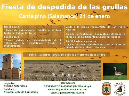 Fiesta de despedida de las grullas en Cantalpino con Aquila Naturaleza