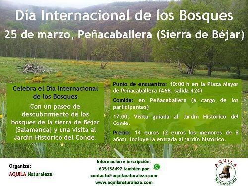 Celebra el Día de los Bosques con Aquila Naturaleza