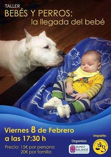 Curso de bebés y perros en Family Balance con el Club Canino Baucan